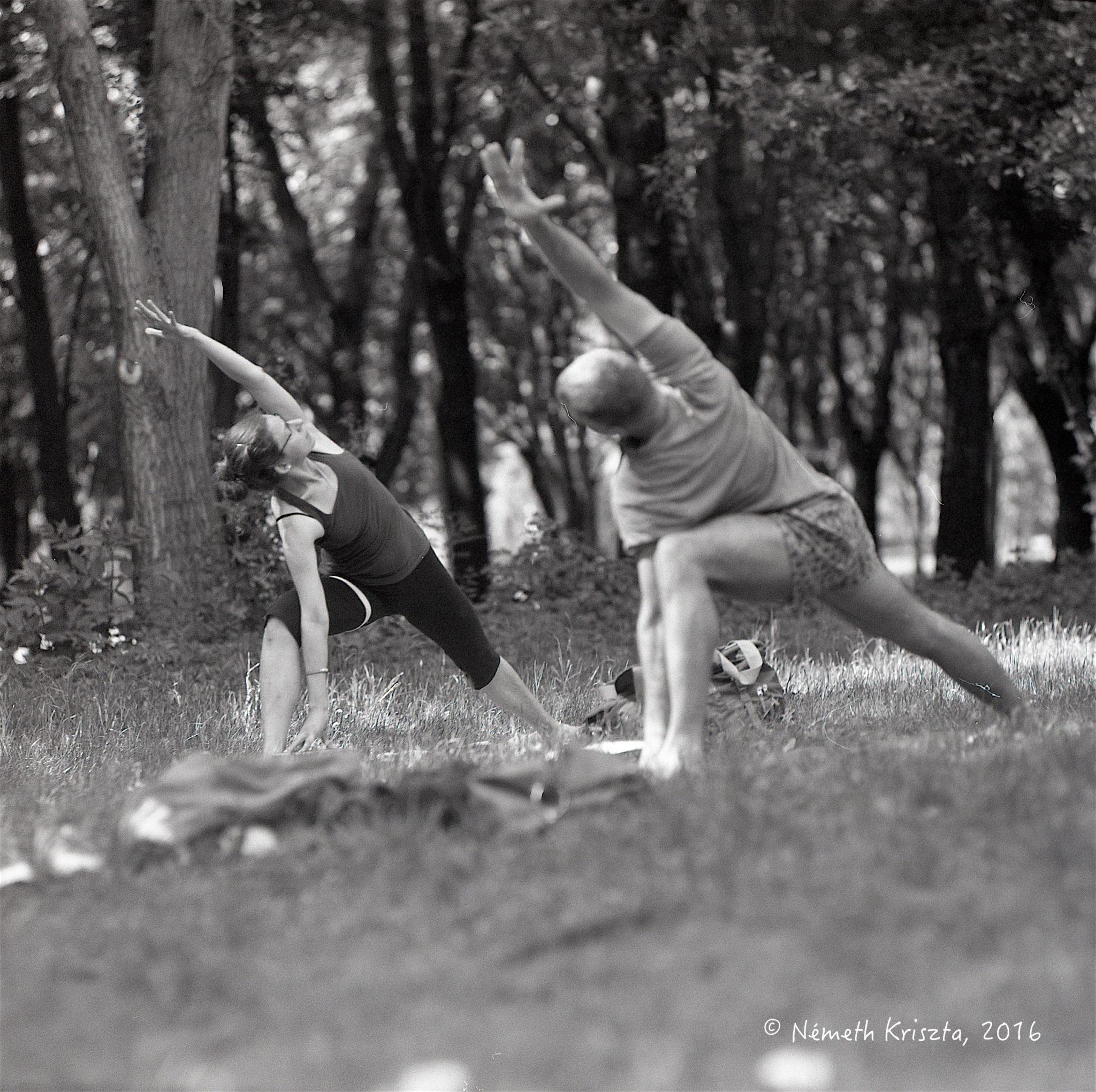 Jógával az egészséges gerincért – Kezdő Iyengar jóga tanfolyam | Szeptember 10-től hétfőnként 19.30